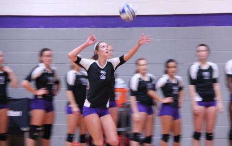 TexAnn volleyball sweeps Texas Wesleyan