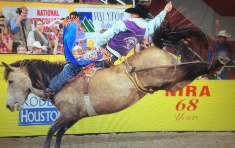 Rodeo team bucks up to a number one ranking