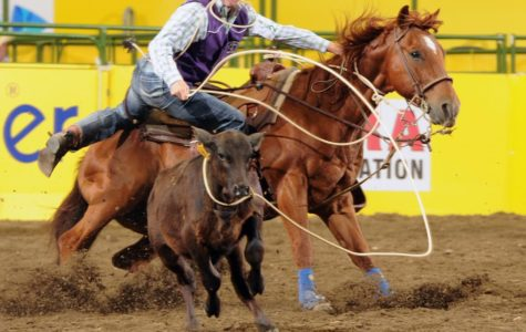 Rodeo teams place first and third at ENMU rodeo