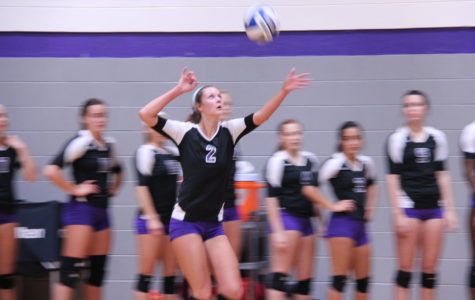 TexAnn volleyball sweeps Texas Wesleyan