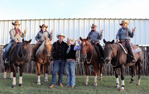 Stock Horse team named world champion