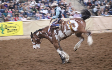 Tarleton Night at the Rodeo at Fort Worth Stock Show and Rodeo sells out section