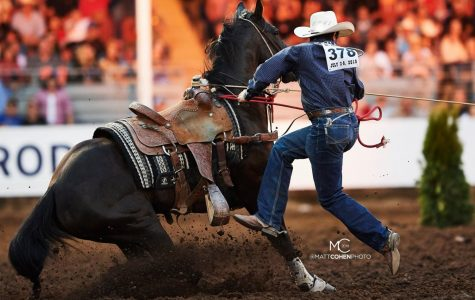 Haven Meged Claims Title at College National Finals Rodeo