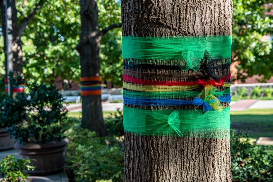 The Office of Diversity and Inclustion decorated trees with LGBTQ+ ribbons in front of the Barry B. Thompson Student Center.