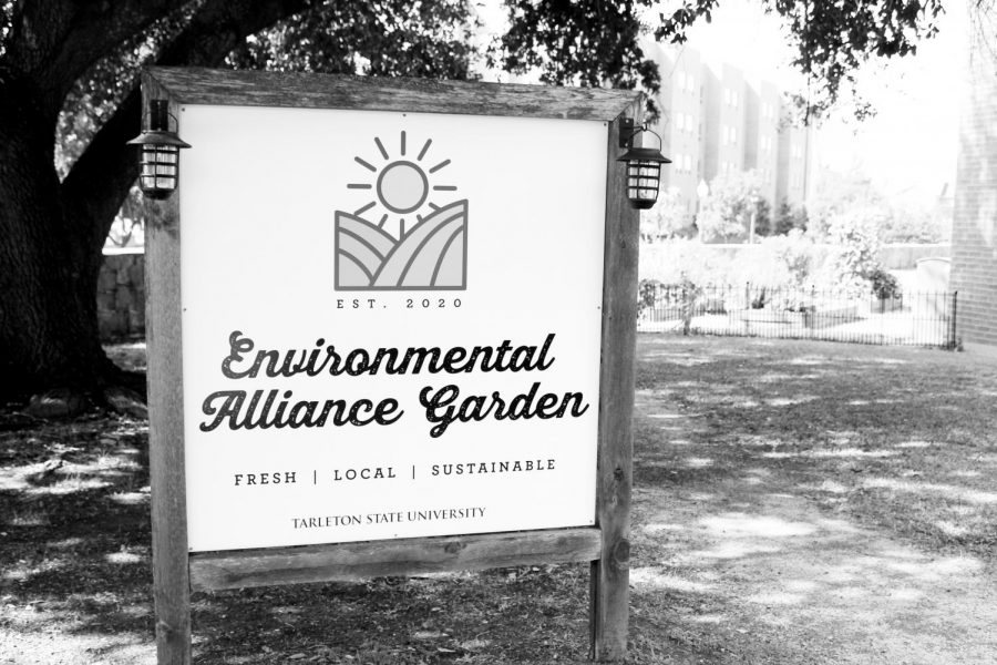 The Environmental Alliance Garden is located on the side of the Clyde H. Wells Fine Arts building, facing the Honors Residence Hall at the back of the Dick Smith Library.